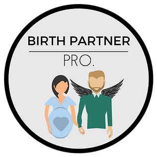 Birth Partner Pro..png