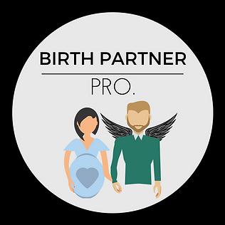 Birth Partner Pro..png