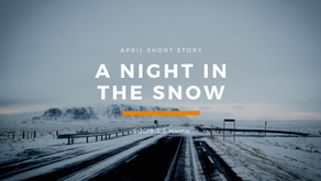 A Night in the Snow - Short Story