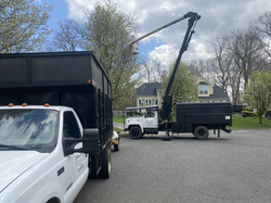 Pete's Tree Service set up for prunning