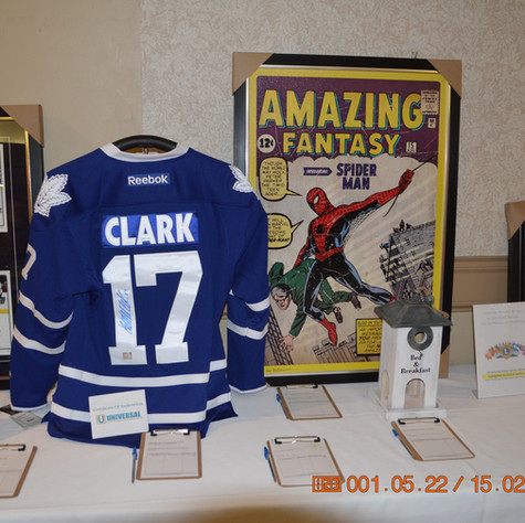 The Auction Items In Sports