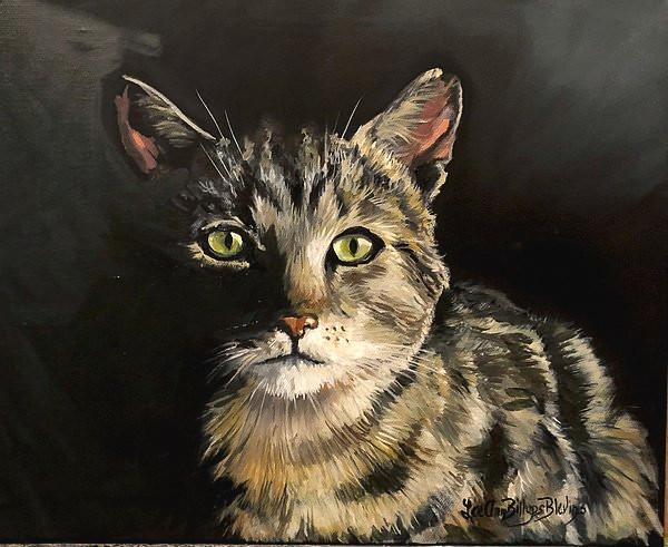 Cat in Darkness
