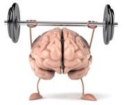 brain-weights-isp-180.jpg