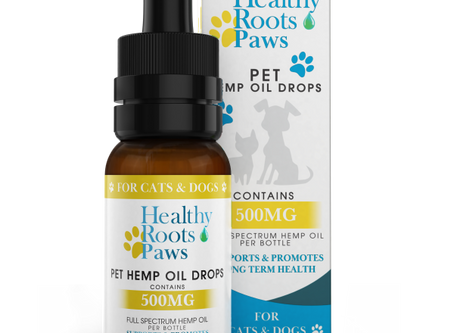 CBD for Dogs, huh?