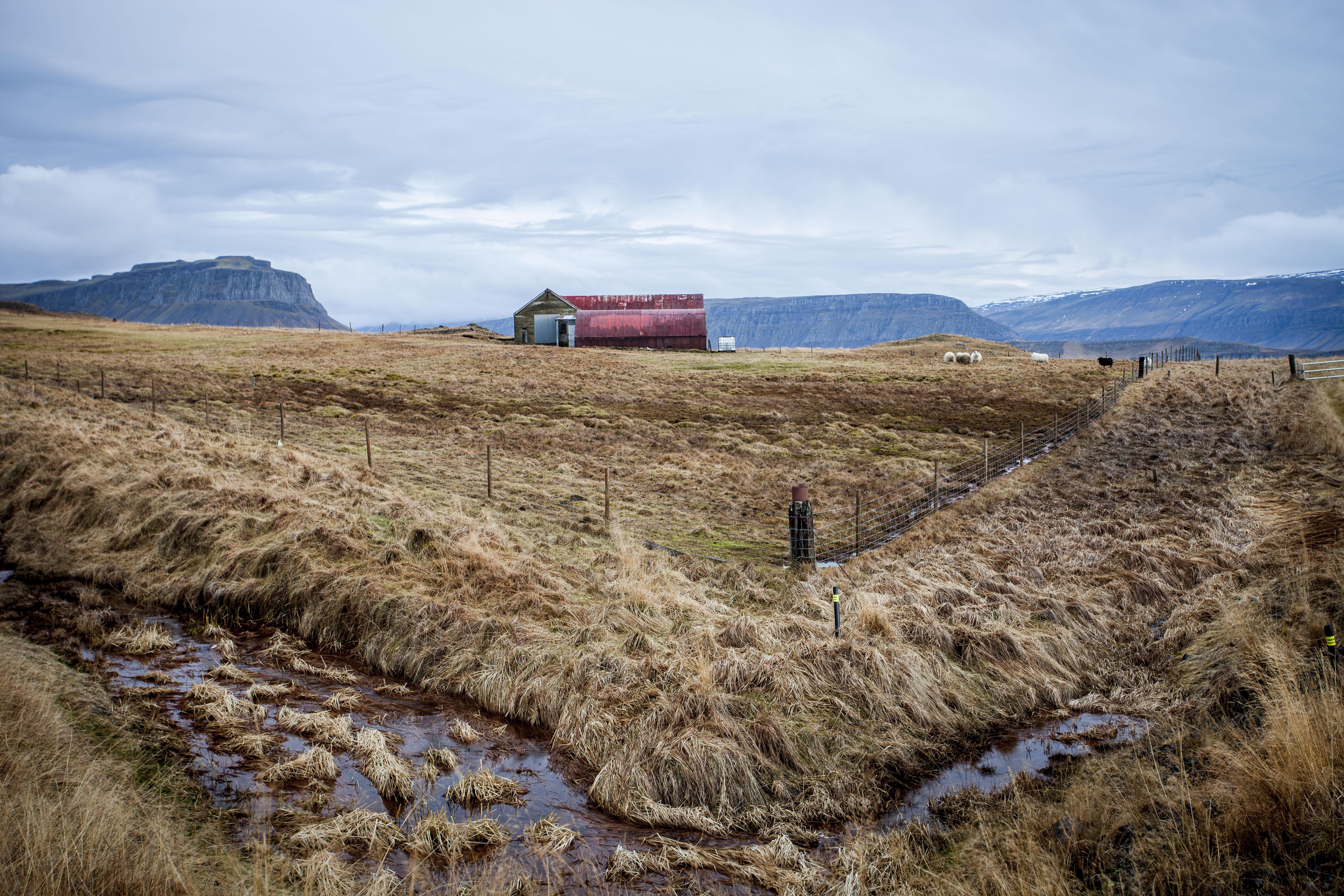 Barn in þingvellir, Iceland. 2016.