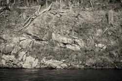 A River's Edge, 2015.