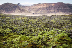 The Lava Field, Iceland 2016