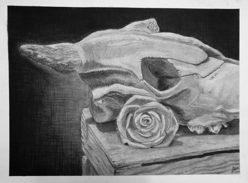"""A Western Still,"" by Rose Sanatana"