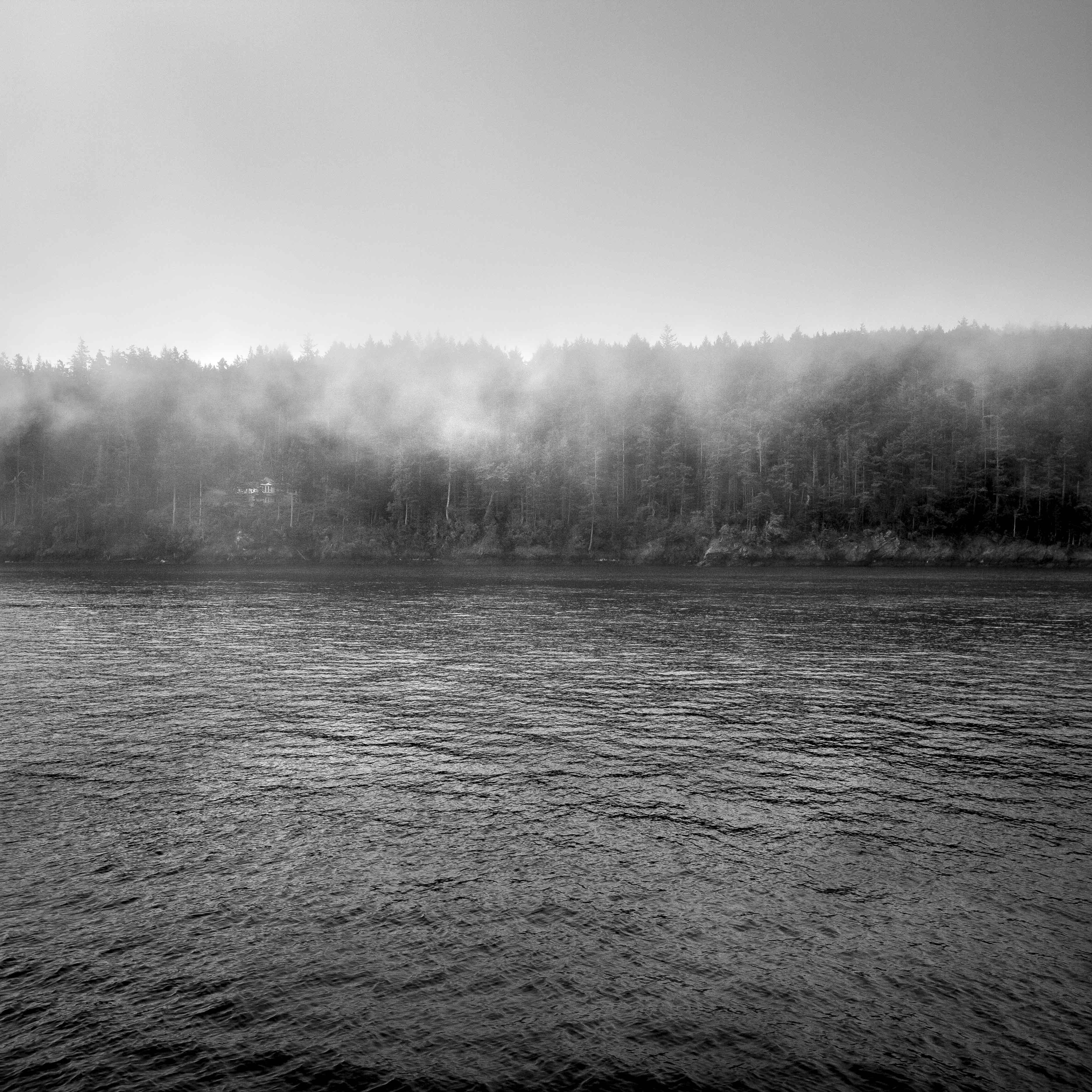 Rolling Fog. 2017.
