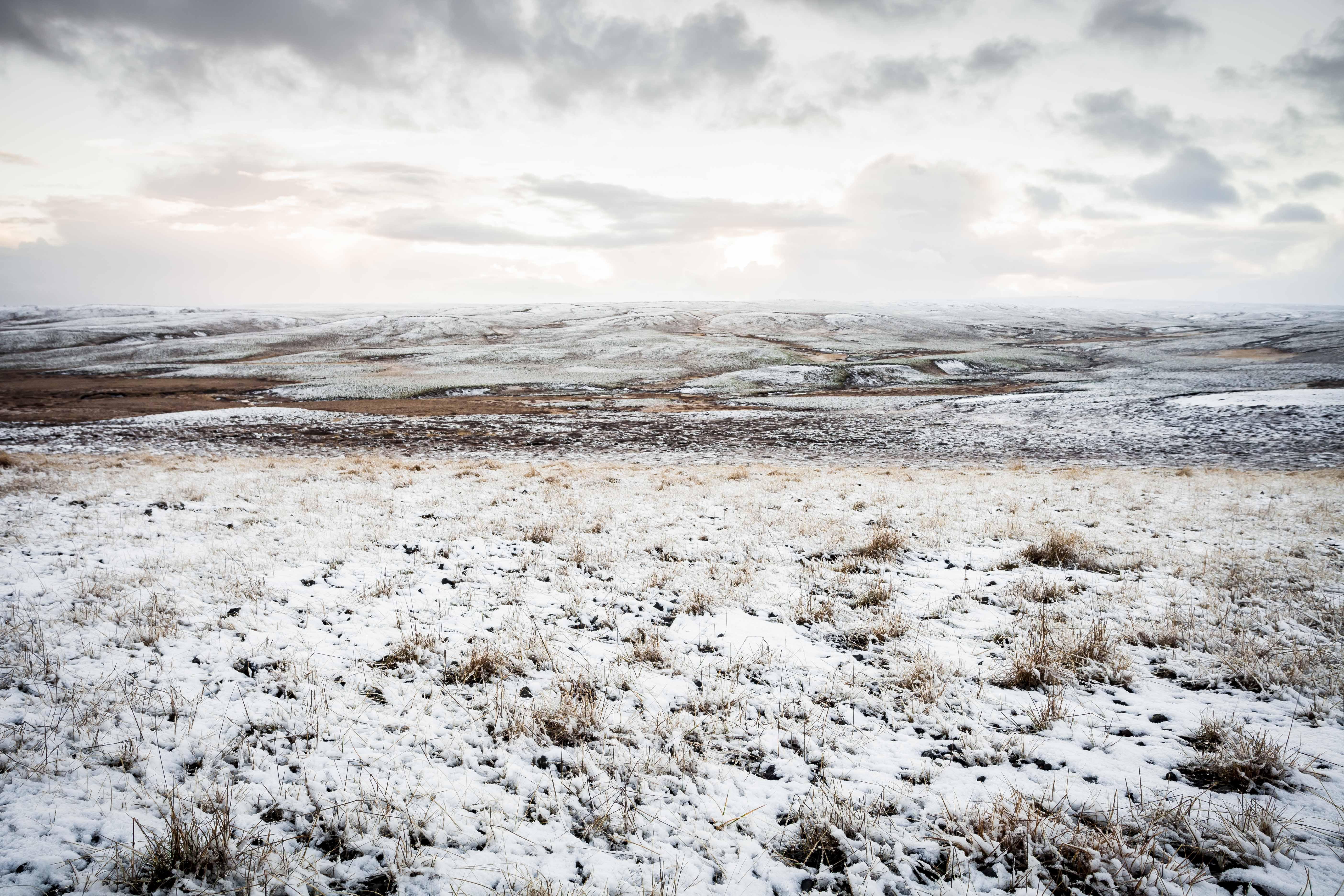Tundra. Iceland, 2016.