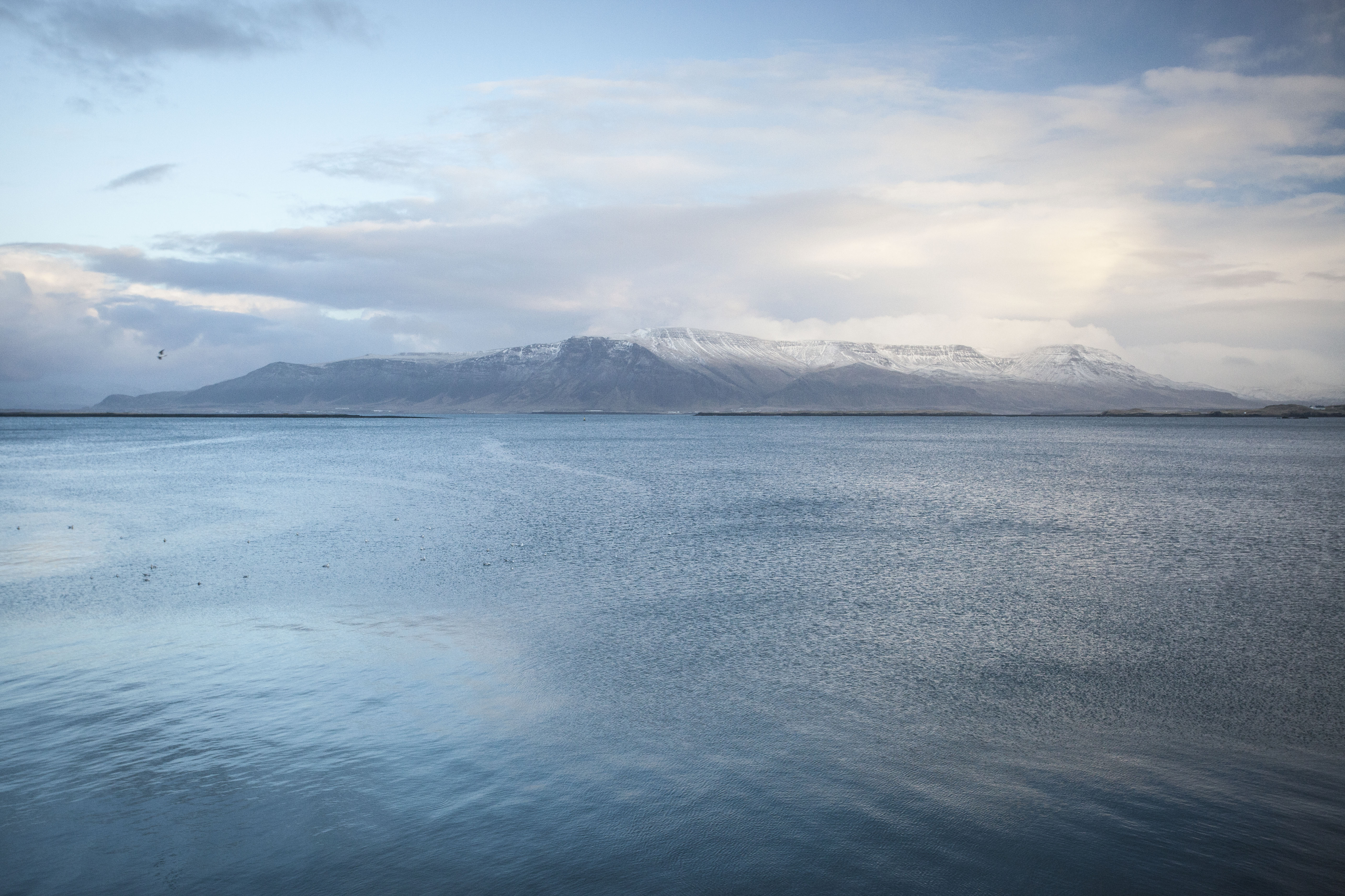 Reykjavik Waterfront. Iceland, 2016.