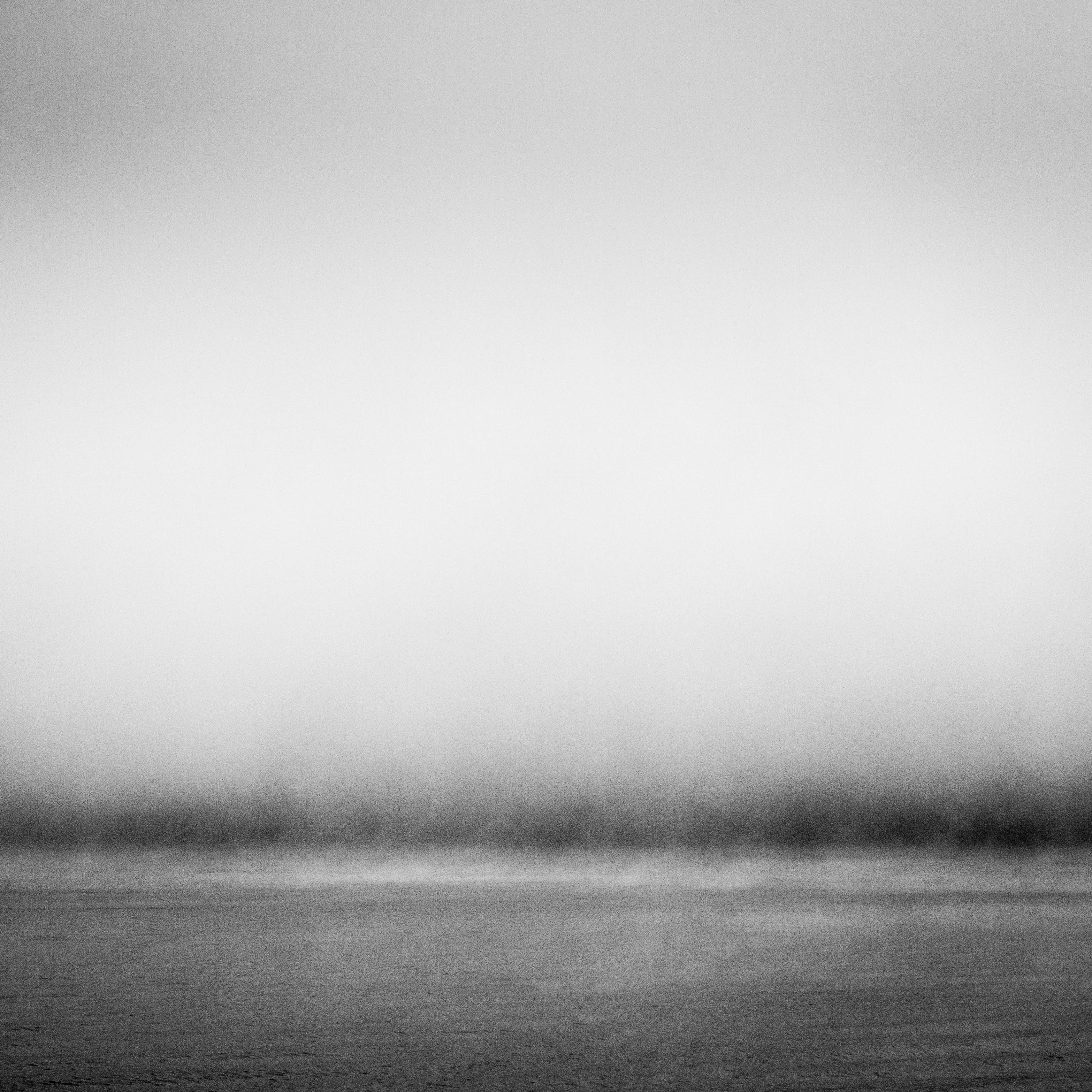 Entering the Fog. 2016.
