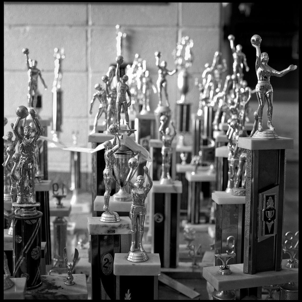 Trophy Pile