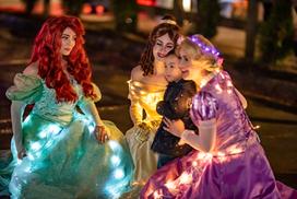 Princess Lights