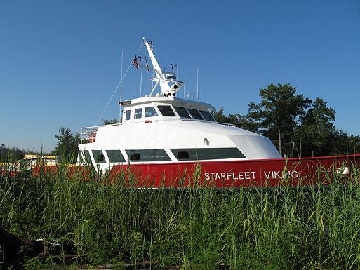 Starfleet Viking