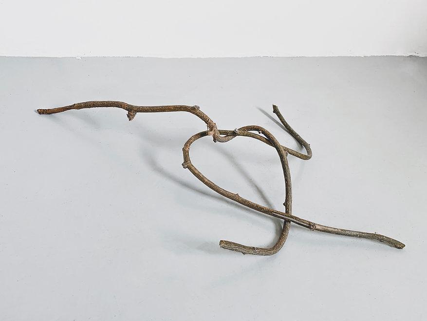 the knot by Elena Ceretti Stein.jpg