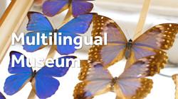 MULTILINGUAL MUSEUM