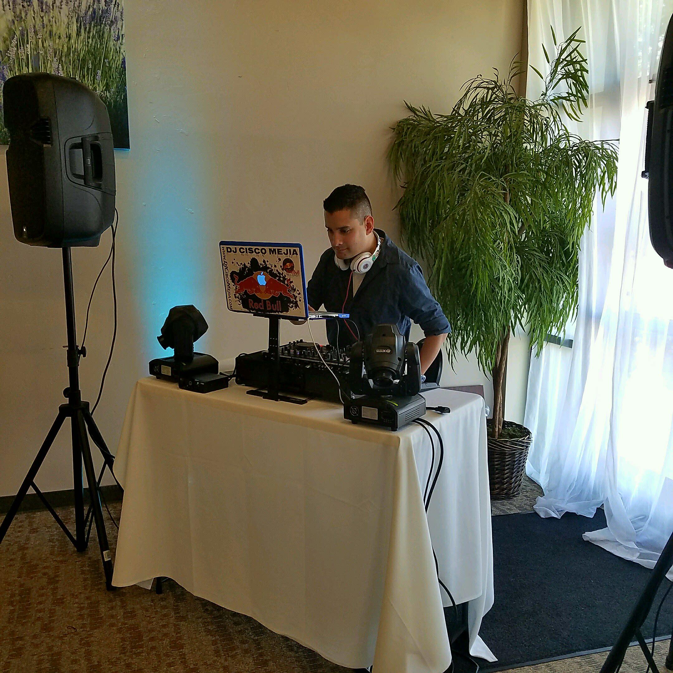 Small DJ Wedding Setup