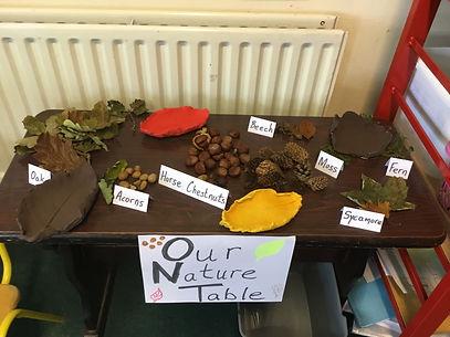 Nature table 1.JPG