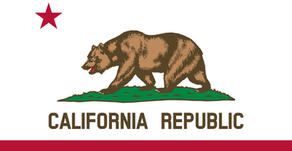 Steps to Incorporating a Dental Practice in California