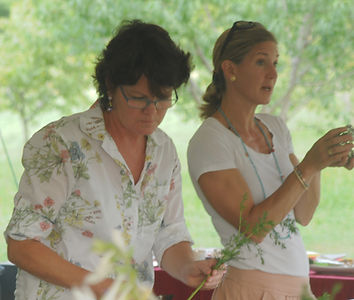 Field to Vase organic flower workshop