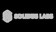 Logo_0000_Logo_Solidus_t.png