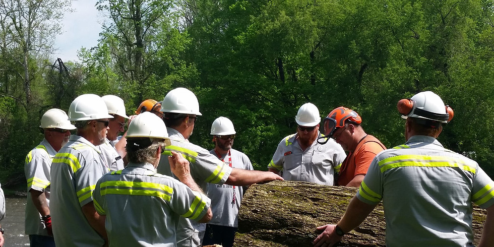 Chainsaw Operation and Safety