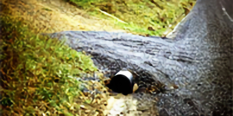 Drainage: The Key to Roads that Last