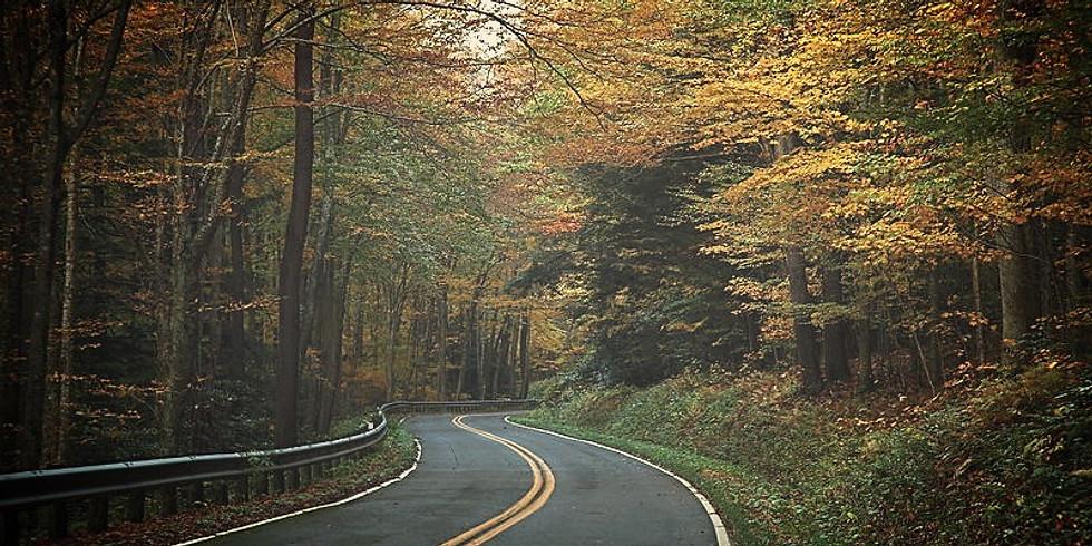 Asphalt Roads: Common Maintenance Problems