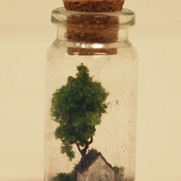 Home in a Bottle