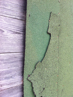color, texture, decay