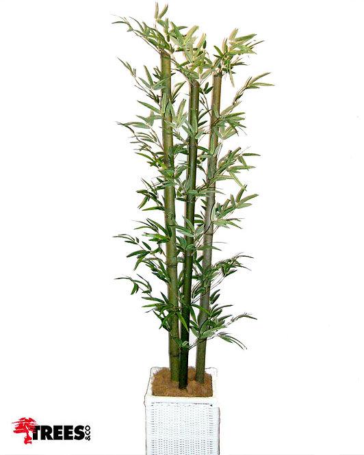 Bambu Reto x3