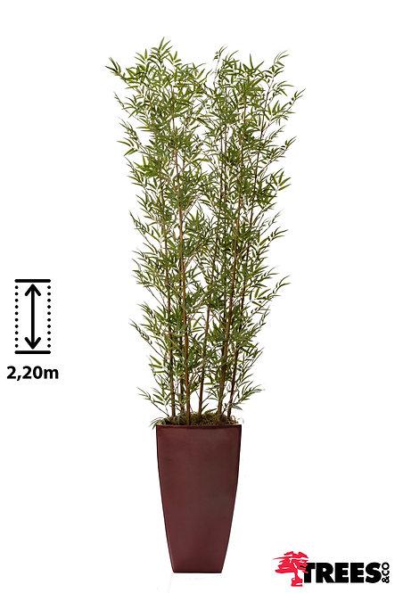 Bambu Fino X7
