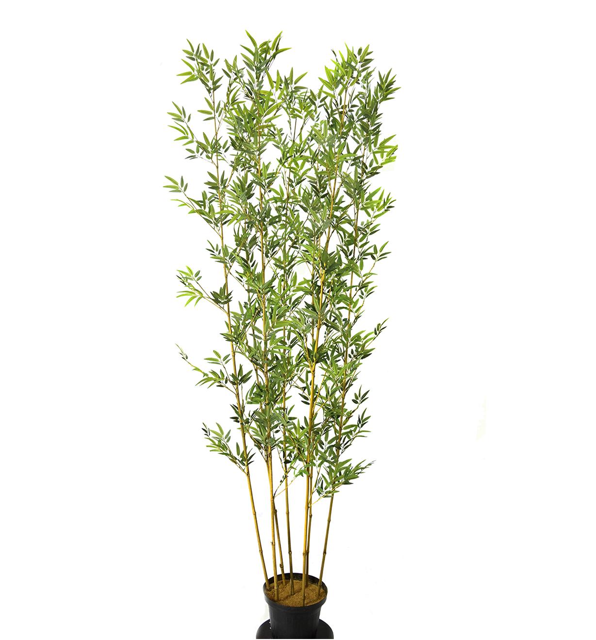Bambu x7