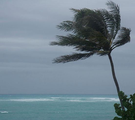 hurricane, mount pleasant, south carolina, wind damage, roof damage