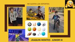 JOAQUIN MONTES
