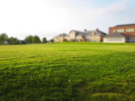 Dealing with the Dry Spots: How to Treat Dry Spots on Grass