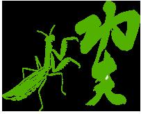 Mantis Gung Fu