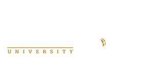 PG - Logo - Horiz - White+Gold - RGB.png