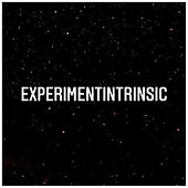 ExpIntrinsic.jpg