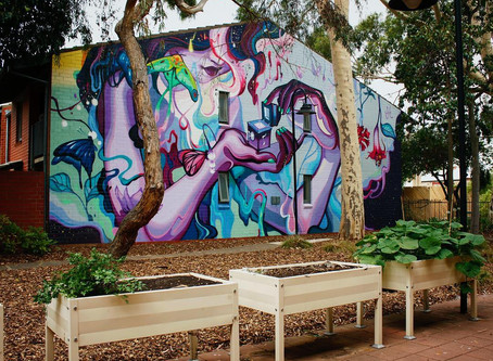 Adelaide's Newest Street Art – Bringing the city to life