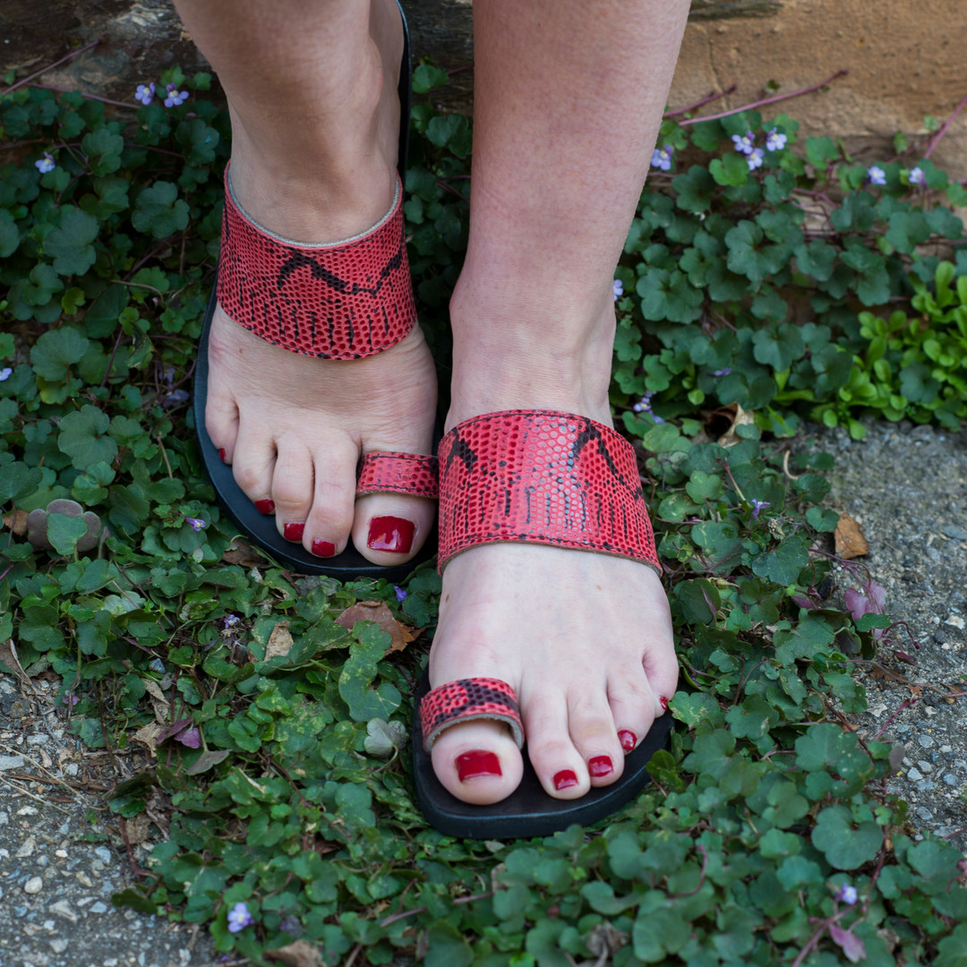 Indian Style Red Snake Print