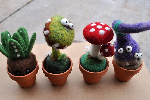 Woolbuddy Crazy Plant Characters