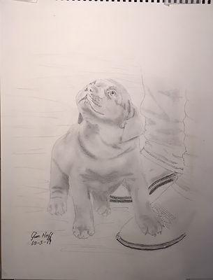 Kristin Elrod Puppy Sketch (2).JPG
