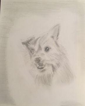 toby sketch (2).JPG