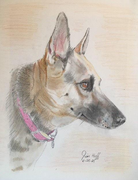 Sophie sketch.jpg