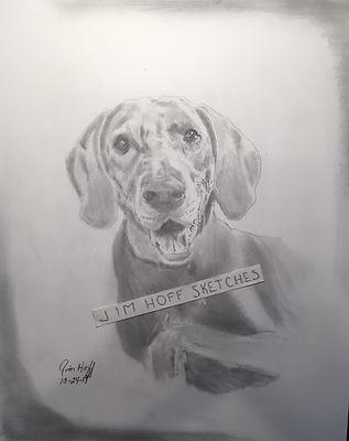 Jamie Decker dog 2 sketch (2).JPG