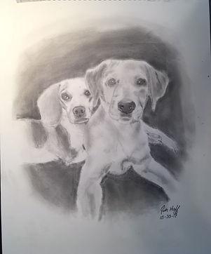 Maisey Sketch (2).JPG