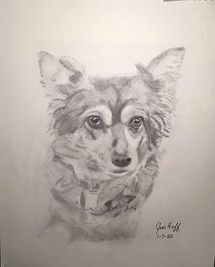 Wendy's dog sketch (2).JPG