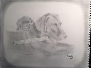 Sadie and Ruger sketch.JPG